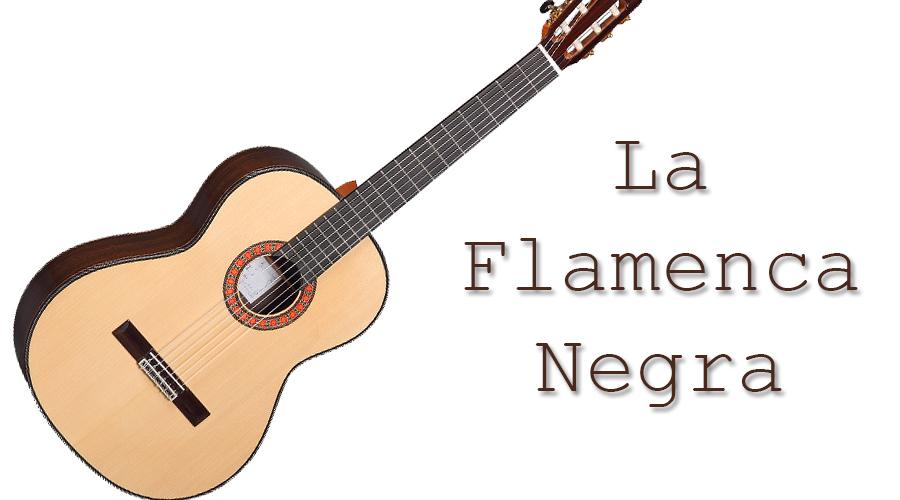 LA FLAMENCA NEGRA